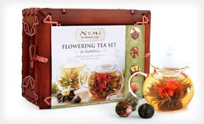 Numi Organic Glass Teapot & 6 Flowering Tea Blossoms