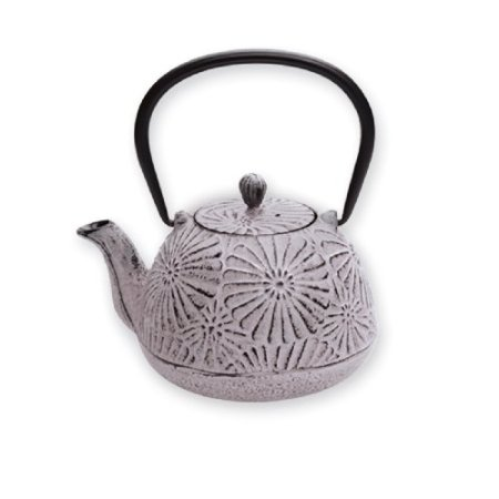 Old Dutch Cast Iron Rhapsody Tetsubin Teapot